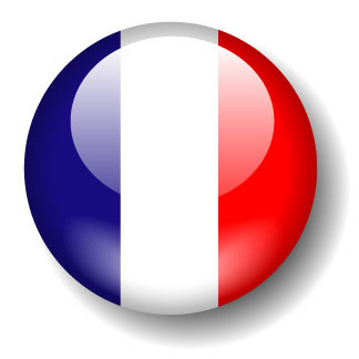 french tuition tutor coach